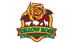 Yellow Rose Fiber Producers